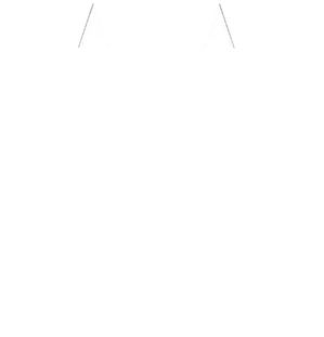 Mission Manor